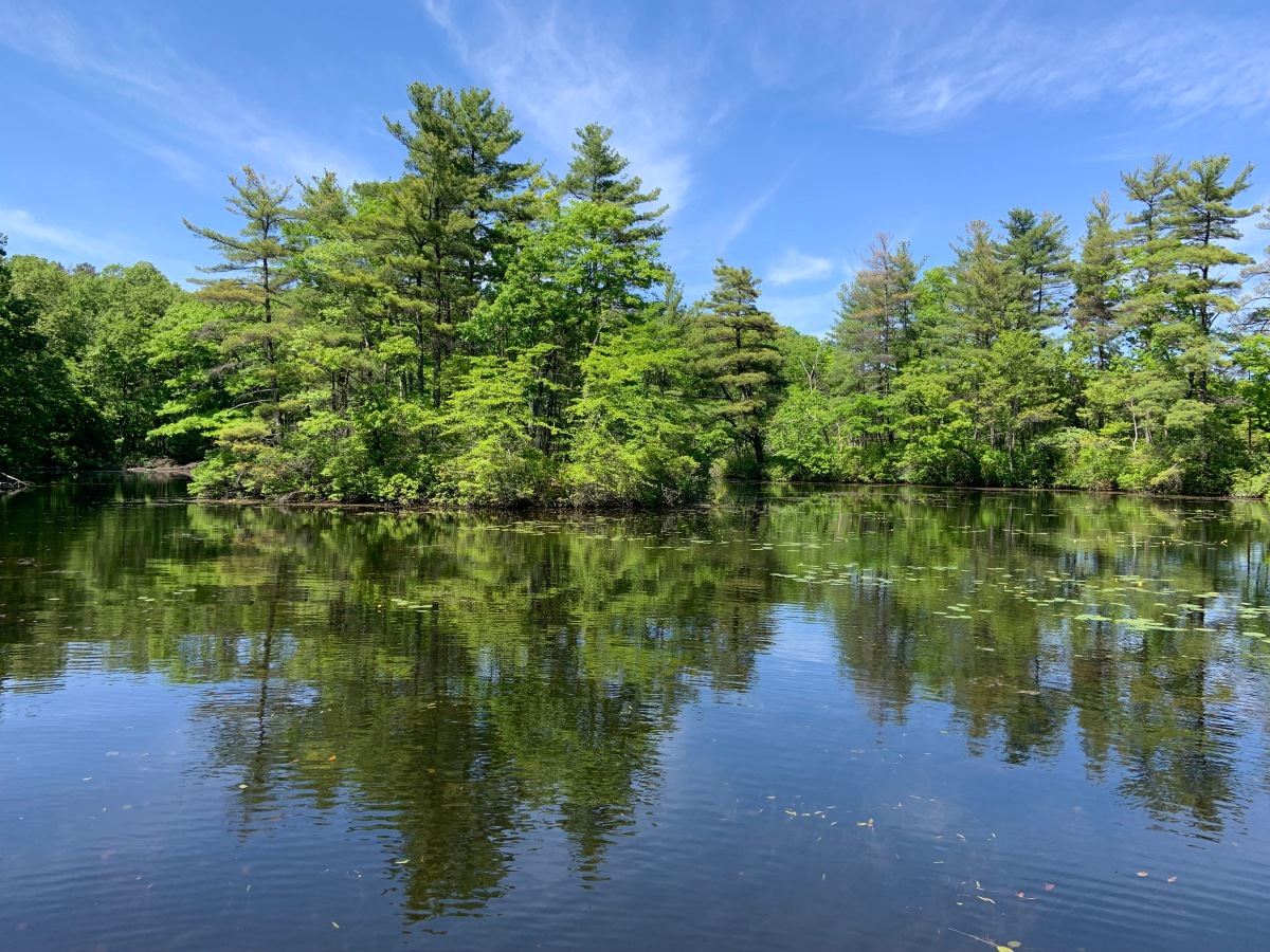 Fishing Report: Whitehall Reservoir, May 27,2019